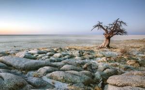 Botswana-Makgadikgadi-Pans