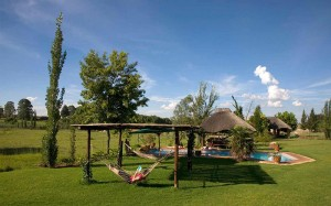 Johannesburg-Airport-Game-Lodge