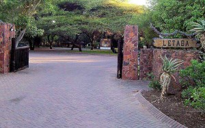 Letaba-Rest-Camp