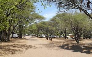 Letaba-Rest-Campsite