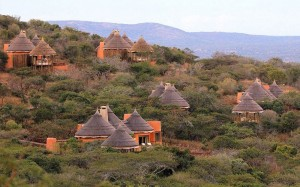 Thanda-Safari-Lodge-Units